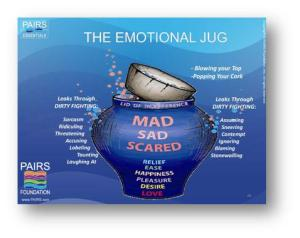 PAIRS Emotional Jug