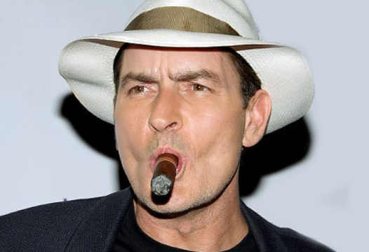 charlie sheen a life of self The most disturbing aspect of charlie's life is his continuing history of  to come  out of sheen's fiasco, and eventual (self-)destruction will be.